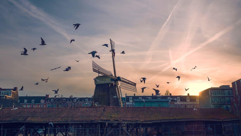 Reiseziele in den Niederlanden